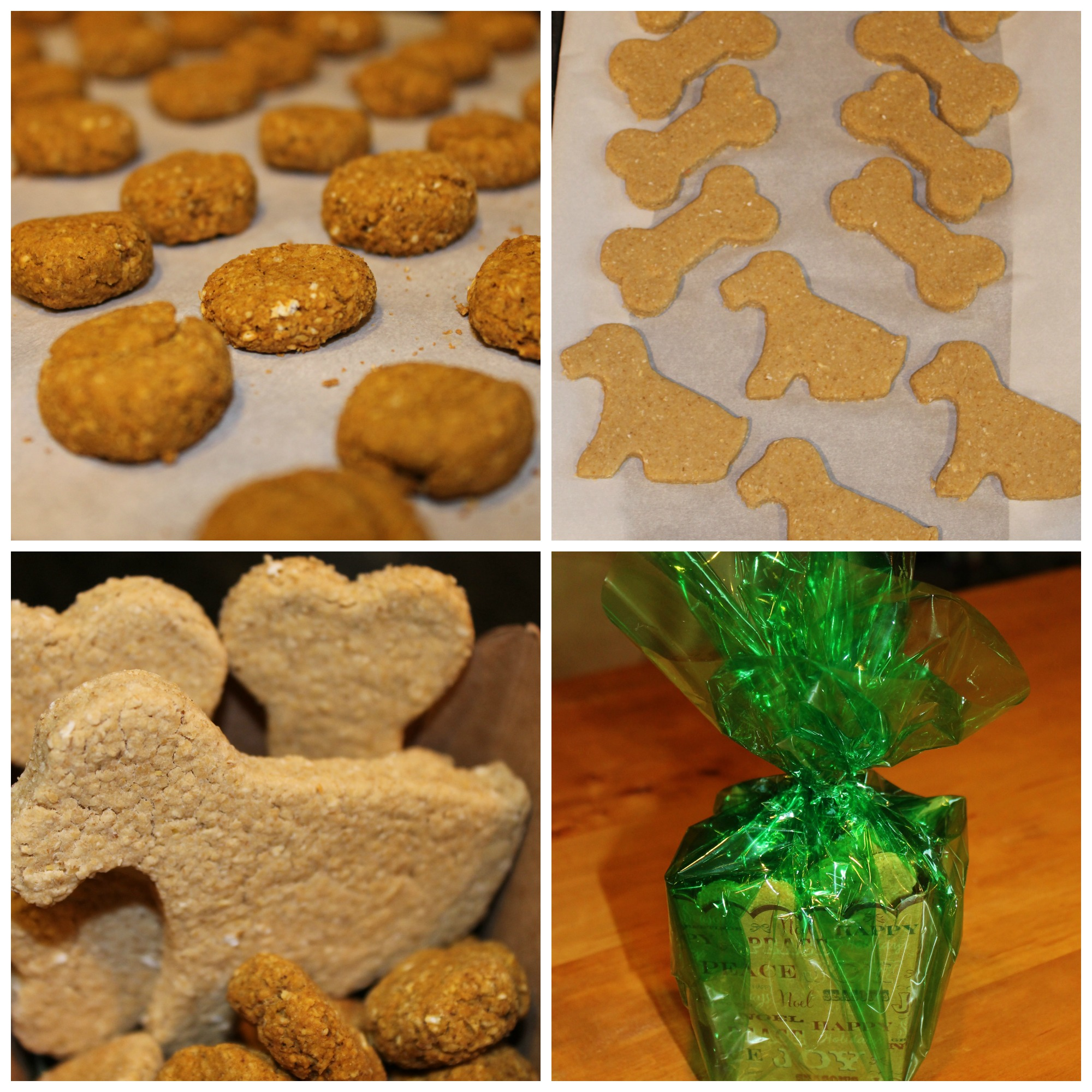 Doggy cookie collage